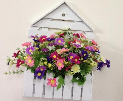 cách trồng và chăm sóc hoa dạ yến thảo2