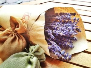 hoa oải hương khô