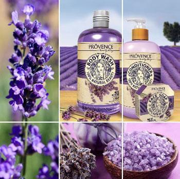 nuoc-hoa-hoa-oai-huong-lavender