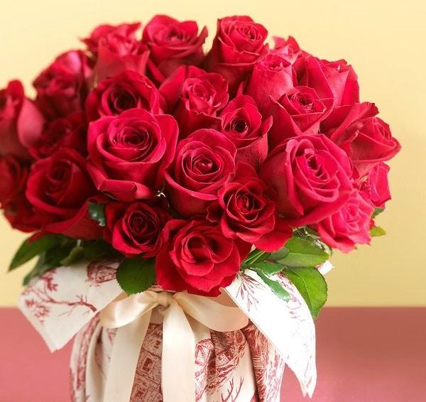 Ý nghĩa hoa hồng đỏ và số lượng hoa nói lên điều gì?