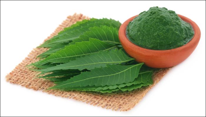 bột neem2
