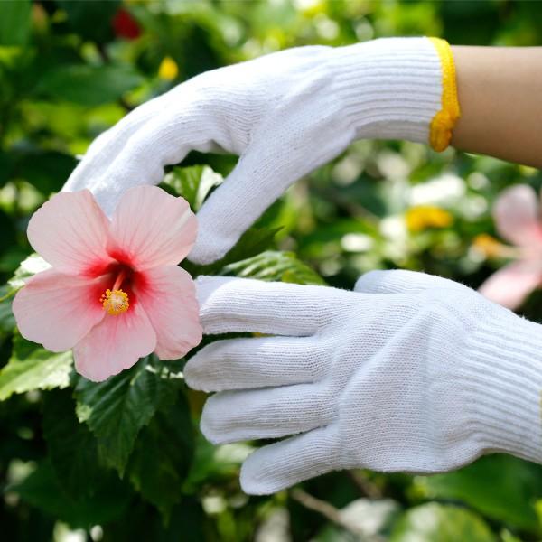 Bộ dụng cụ làm vườn cần thiết dành cho người trồng cây