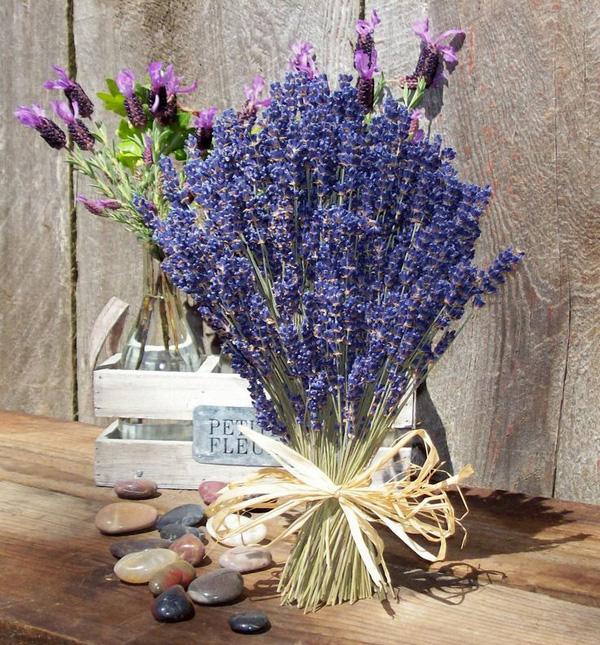 Hoa oải hương khô quà cho ngày Valentine thêm ý nghĩa